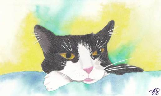 Afternoon Pillow Paws. 5 x 7 Watercolor. © 2012 Sheila Delgado