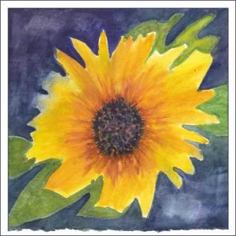 Bloom. 8 x 8 in. watercolor on Arches 140 lb. cold pressed paper. © 2017 Sheila Delgado