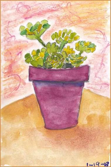 Sprightly Succulent. 4 x 6 watercolor on paper. © 2018 Sheila Delgado