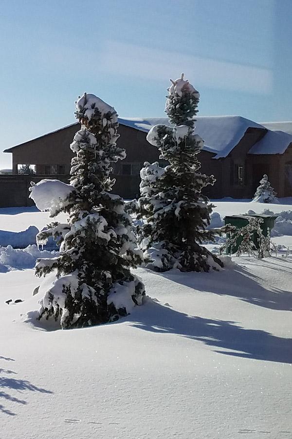 Winter blanket. 2.23.19, SMD