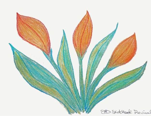 Crayon Play. © 2021 Sheila Delgado.