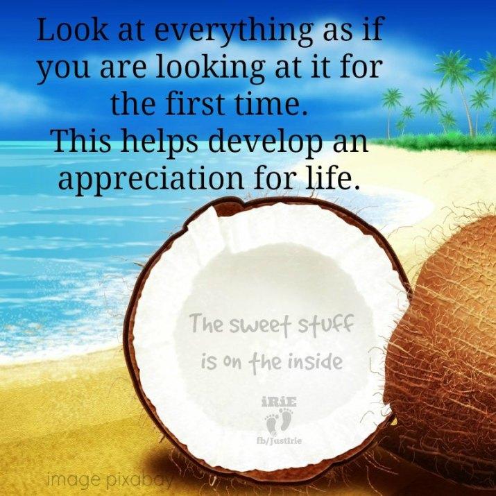 irie 29 coconut