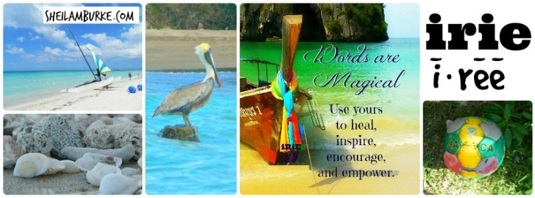 irie-collage-pelican