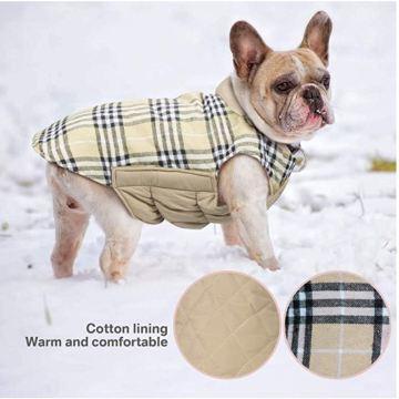 cappottino_scozzese_cani