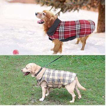 cappottino_scozzese_cani4