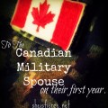 military spouse first year