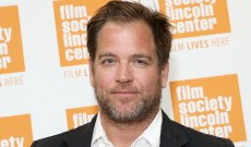 Michael Weatherly's NCIS Costars Respond to Eliza Dushku Sexual Harassment Scandal