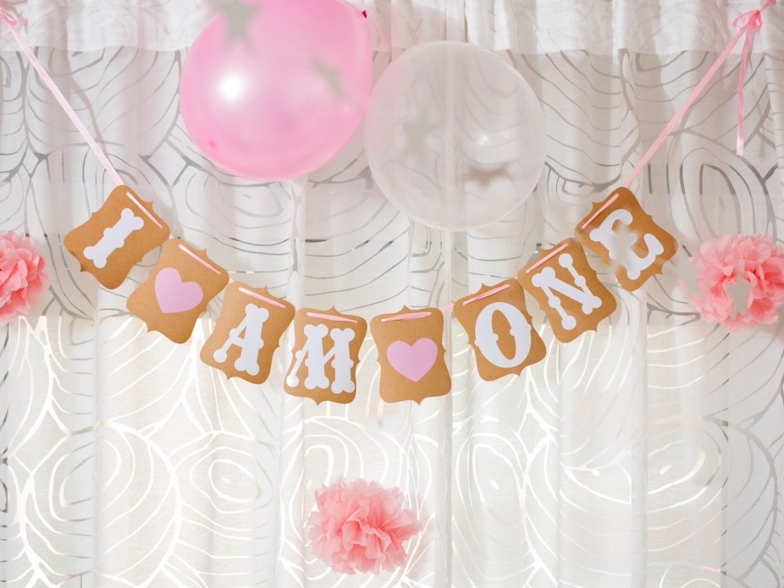 The Best Baby S First Birthday Banners That You Can Buy On Amazon Sheknows