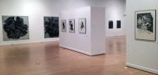SHADES: Contemporary Drawing Exhibition