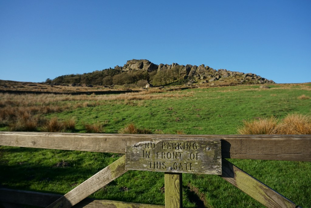 Front of the Roaches