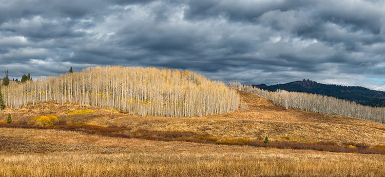 Big Horn Mountains in the fall