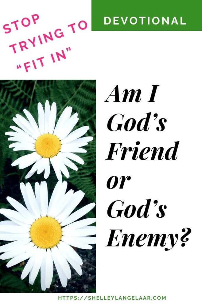 Am a I God's Friend or Enemy? Devotional