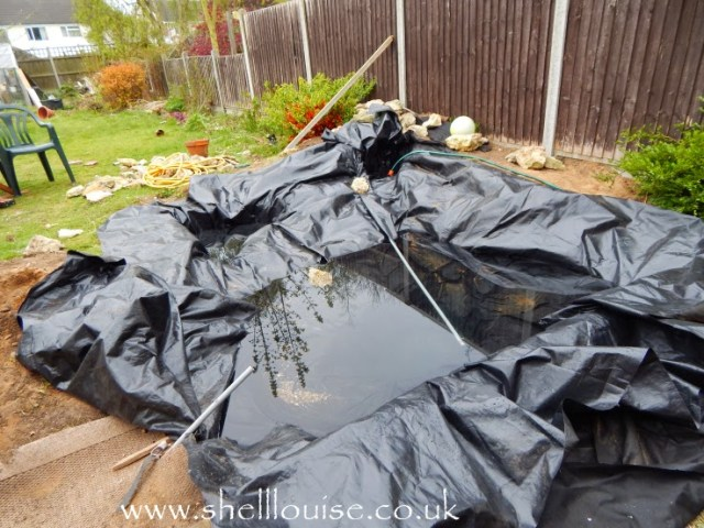pond liner and more water