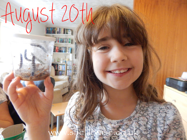 Ella and the caterpillars on August 20th