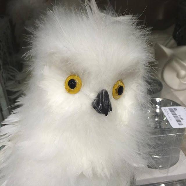 Home Sense Lincoln - fluffy owl decoration