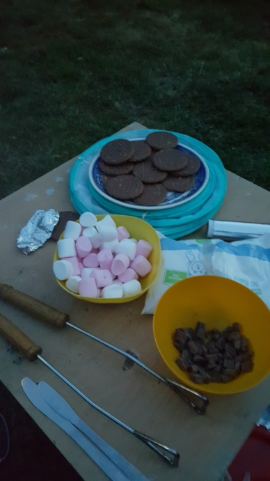 s'mores ingredients
