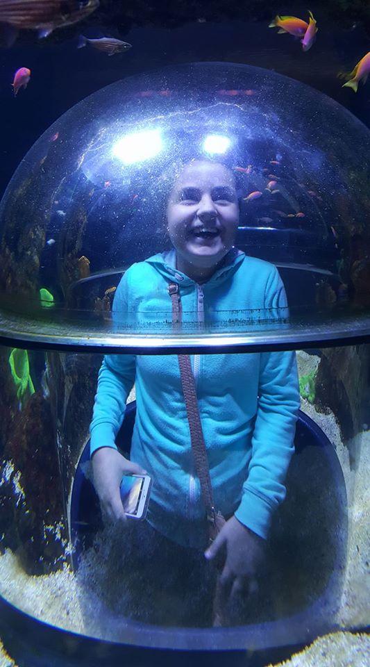 skegness-aquarium-05