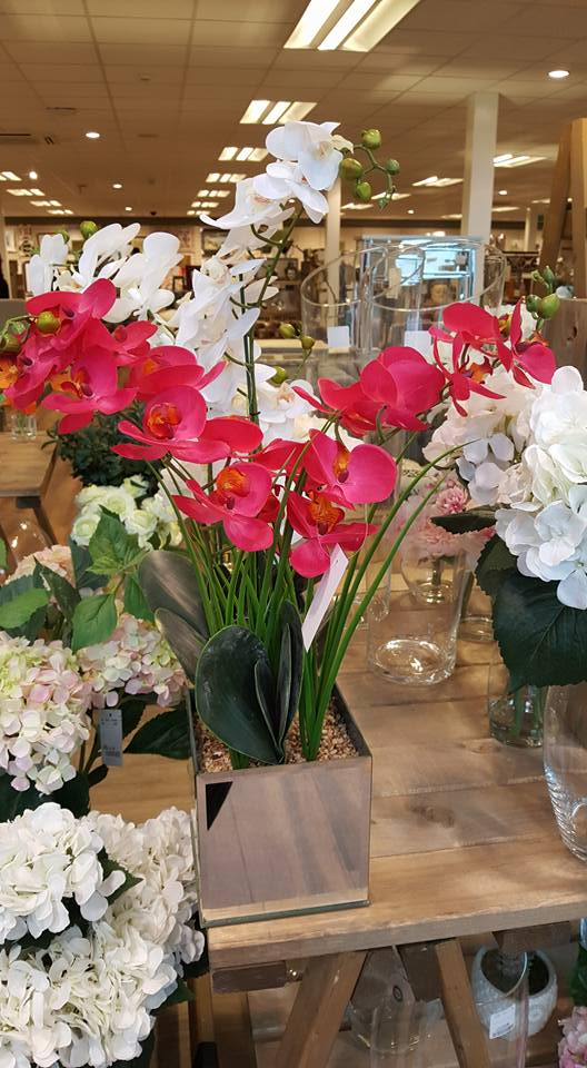 HomeSense artificial orchids Refresh your home