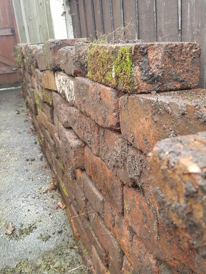 Bricks for raised bed