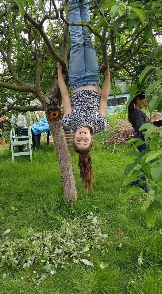 May Book Club - Hanging upside down on the apple tree