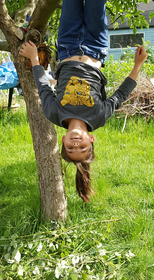 May Book Club hanging upside down on the apple tree