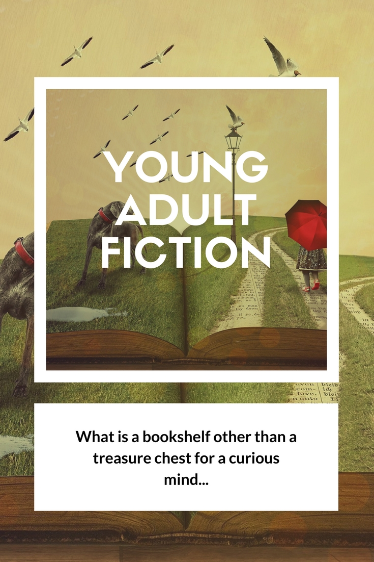Young adult fiction - Book Display Posters