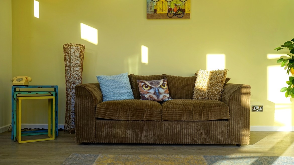 owl cushion on sofa in small living room