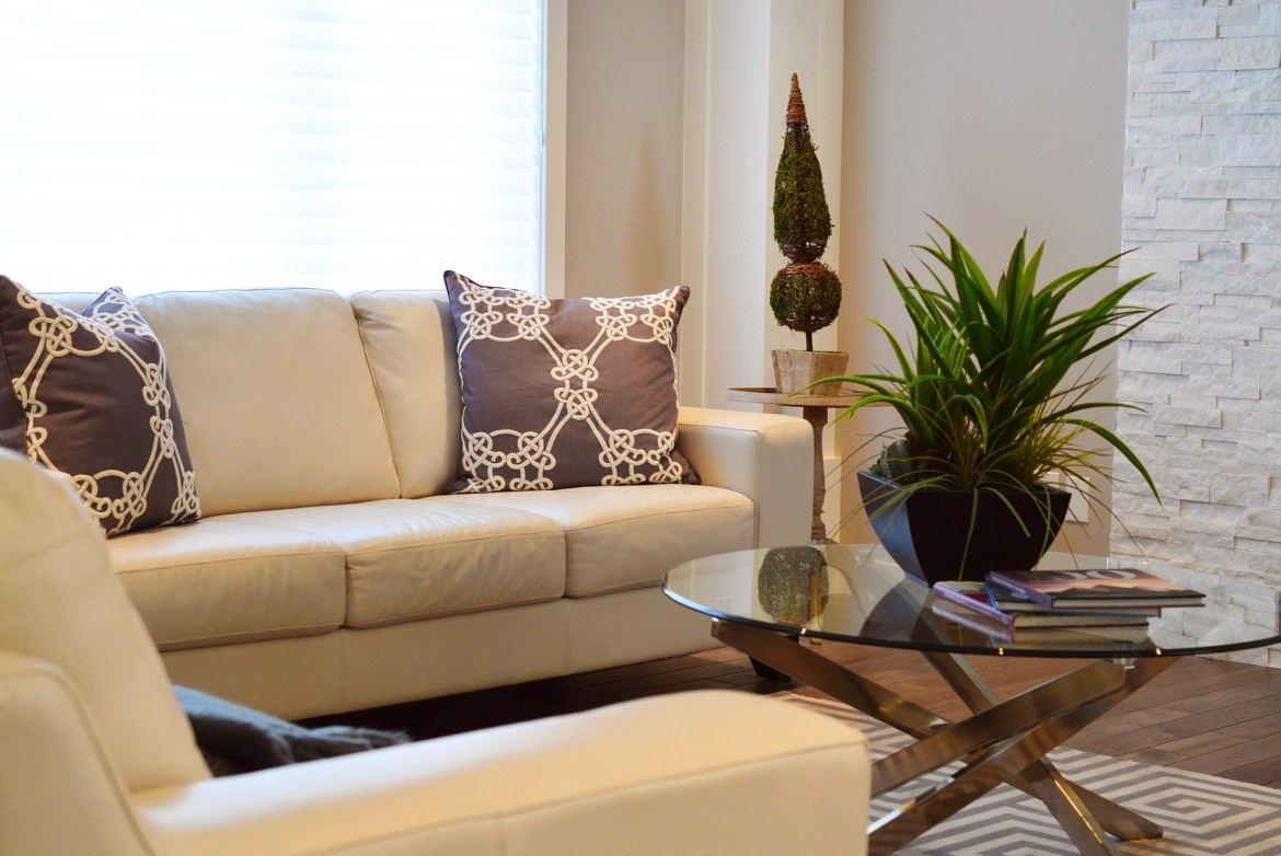 plants in small living room