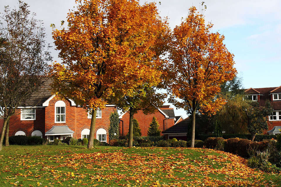 house in autumn with trees in front - autumn home checklist