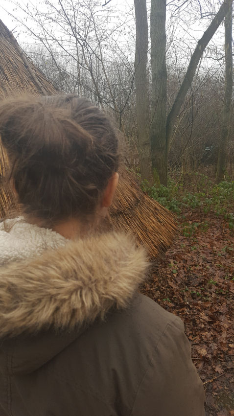Rainy walk in Hill Holt Wood