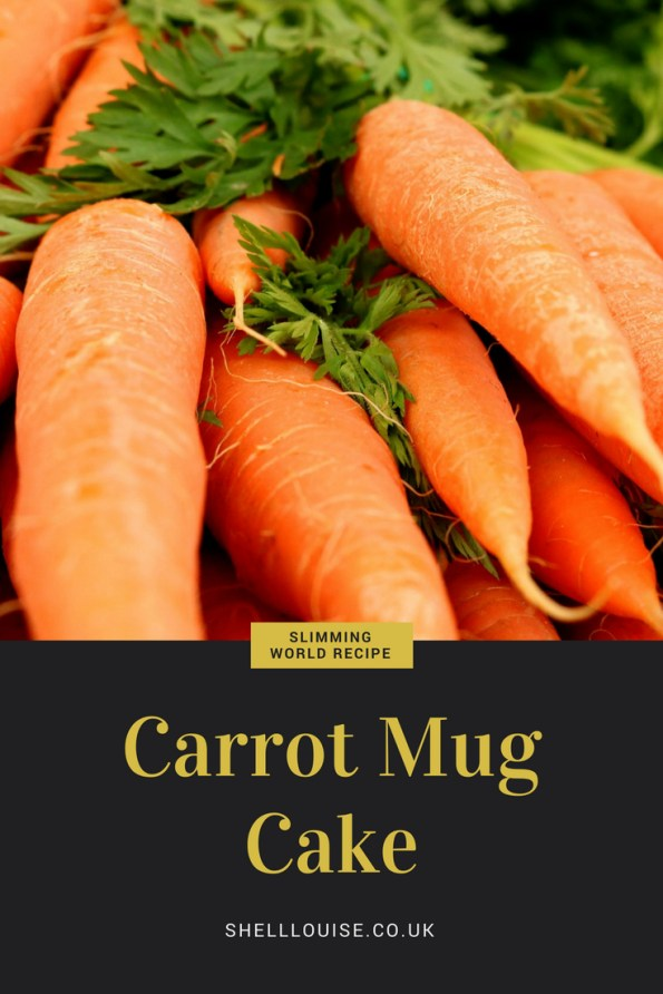 Carrot Mug Cake Slimming World Recipe That Serves 1 And Is