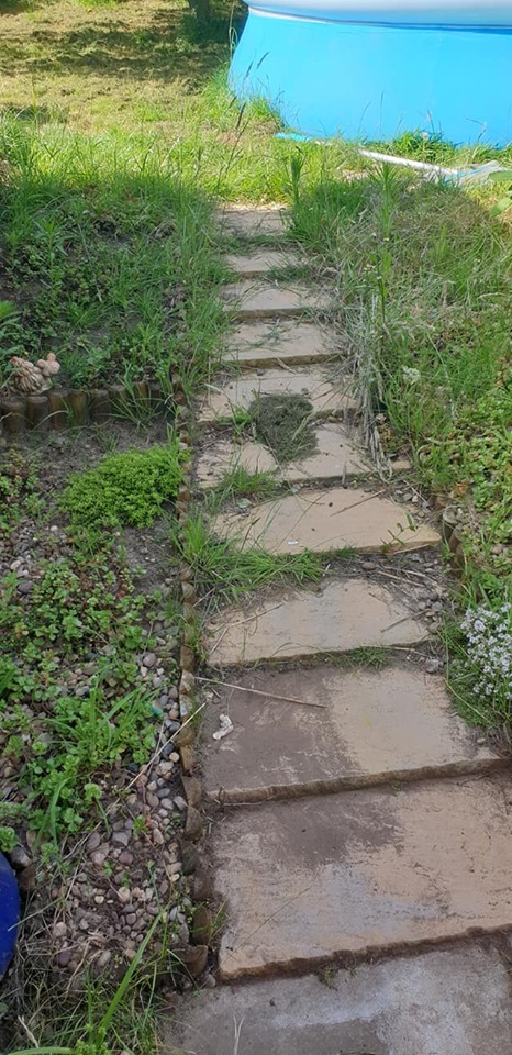steps before weeding