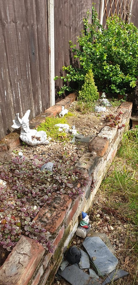weeded the raised bed - raised bed after weeding