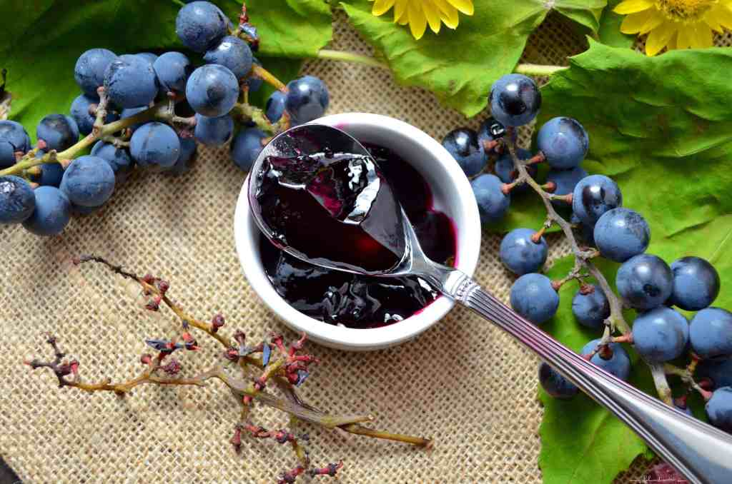 An overhead shot of a spoonful of Concord Grape Jelly, surrounded by fresh concord grapes.