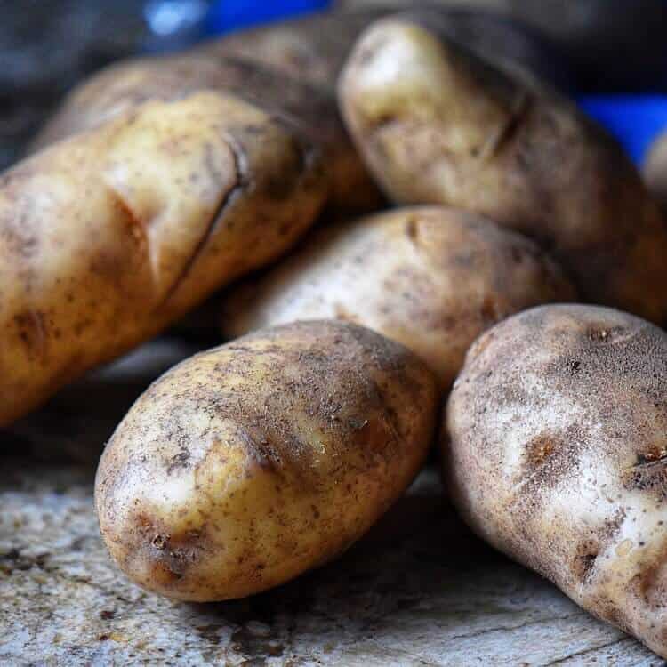 How to make hash browns begins with russet potatoes, pictured here.