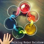 Color Mixing: Walking Water Rainbow