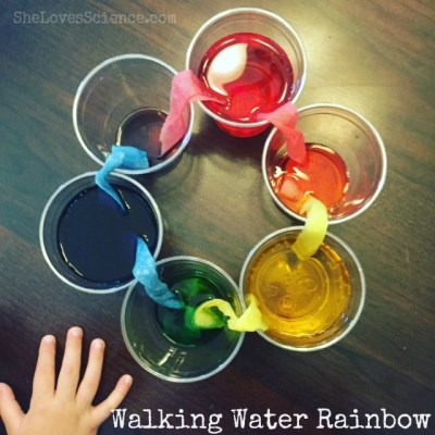 walkingrainbow