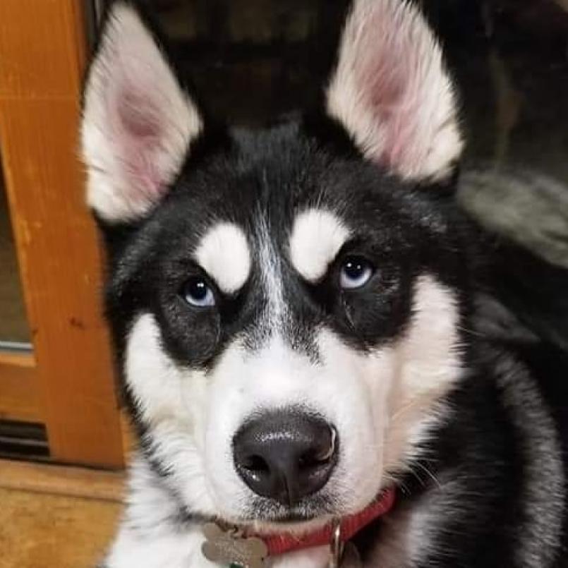 Cole looking cute