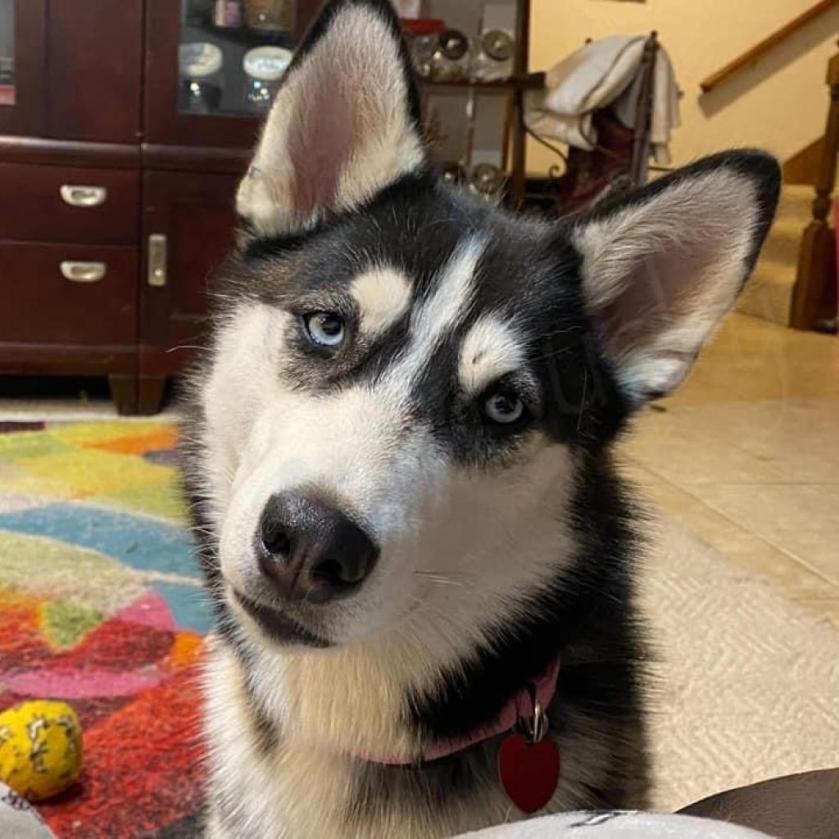 Kali looking cute