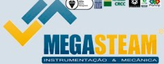 MEGASTEAM