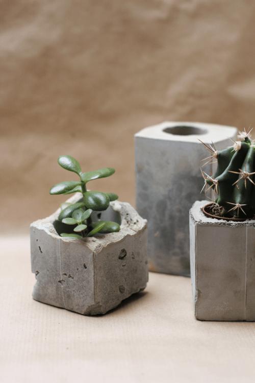 Diy concrete planters lightingupbubbles for Painting concrete pots