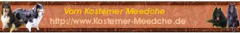 banner_kostemer