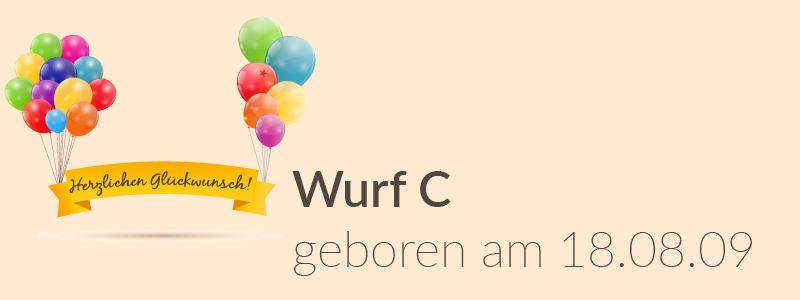 Der C-Wurf hat Geburtstag