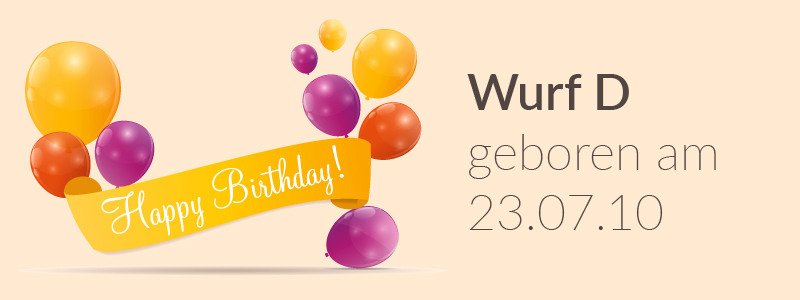 Der D-Wurf hat Geburtstag