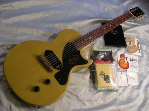 Can you change pickups on a gibson lpj | My Les Paul Forum