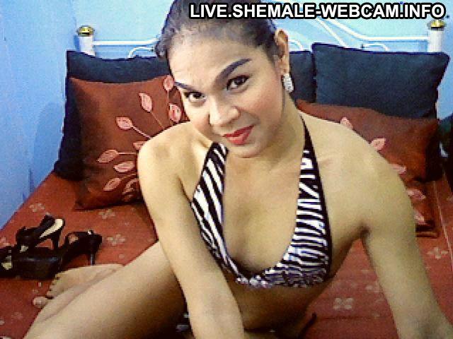 eskort prostitution webcam live