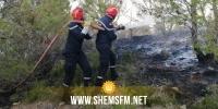 الكاف: السيطرة على حريق اندلع بجبل دور السند