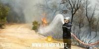 وحدات الحماية المدنية تطفئ 91 حريقا خلال 24 ساعة