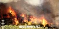الكاف:  منذ بداية الصائفة تسجيل 37 حريقا بالغابات