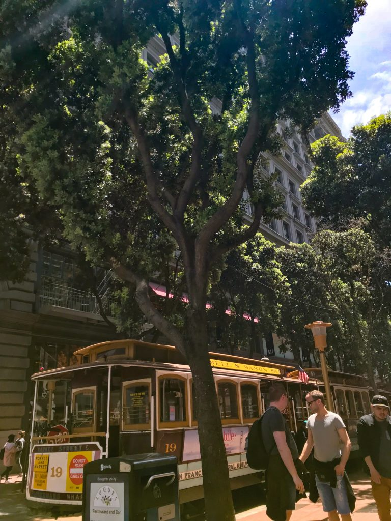 trolley-green-trees